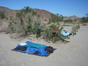Sleeping at the Baja 1000