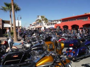 Rows and Rows of Motorcycles