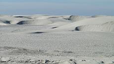 Sand Dunes of Guerrero Negro, Mexico