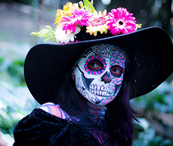 Day of the Dead Celebrations